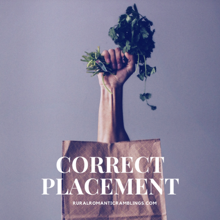 Correct Placement - RuralRomanticRamblings.com