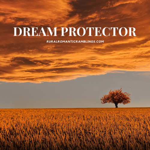 Dream Protector - R&R Ramblings