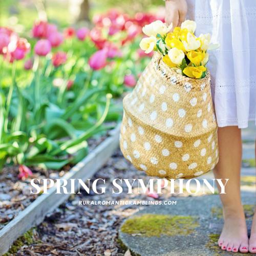 Spring symphony - R&R Ramblings