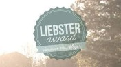 Liebster Award 2016 (Nik)