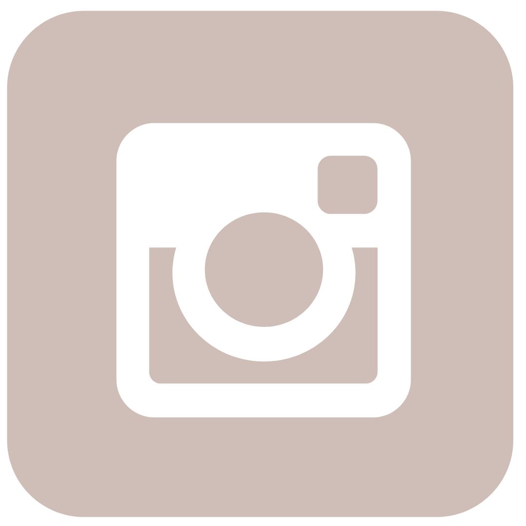 social media IG icon